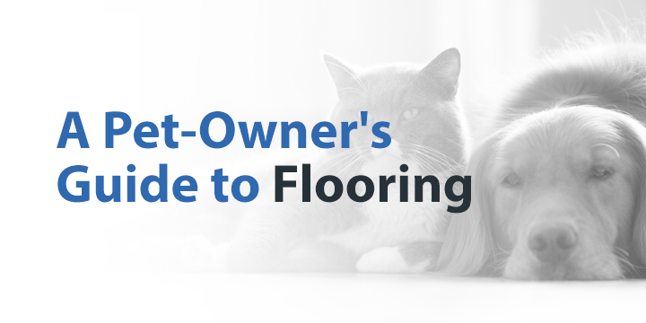 pet owner's guide to flooring