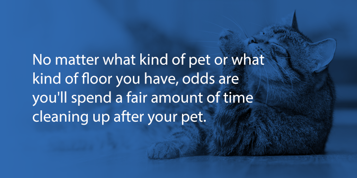 floor cleaning and maintenance with pets